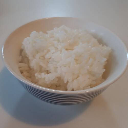 雪若丸のご飯