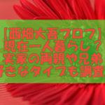 赤いガーベラ