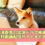 三浦春馬の出演ドラマ映画の無料動画配信サイトまとめ【2020最新版】