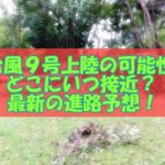 台風9号(2020)も上陸の可能性!どこにいつ接近か?最新の進路予想!