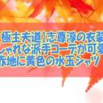 【極主夫道】志尊淳の衣装!おしゃれな派手コーデが可愛い!赤地に黄色の水玉シャツ!