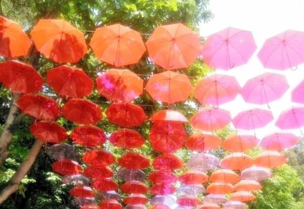並んだ日傘