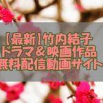 竹内結子【2020最新】ドラマ&映画作品の無料配信動画サイト!多数作品あり