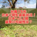 2020【随時更新】台風15号のたまご発生最新状況!日本への上陸や直撃の可能性は?