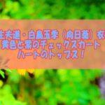 【極主夫道・白鳥玉季(向日葵)衣装】黄色と紫のチェックスカート&ハートのトップス!