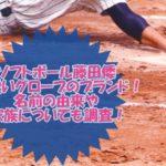 ソフトボール藤田倭(やまと)の可愛いグローブのブランド!名前の由来も調査!
