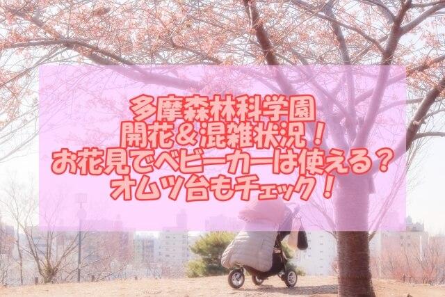 ベビーカーと桜
