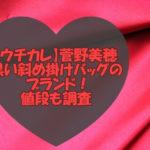 【ウチカレ】の菅野美穂の黒い斜め掛けバッグのブランド!値段も調査