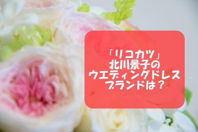 「リコカツ」衣装!北川景子のウエディングドレスブランドは?