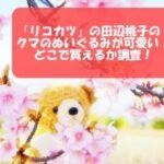「リコカツ」の田辺桃子のクマのぬいぐるみが迷彩柄衣装で可愛い!どこで買えるか調査!
