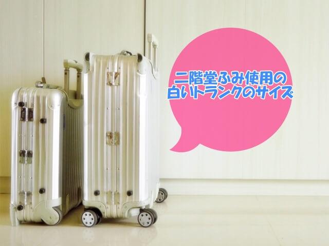 「プロミスシンデレラ」二階堂ふみの白いトランクが小さめサイズ