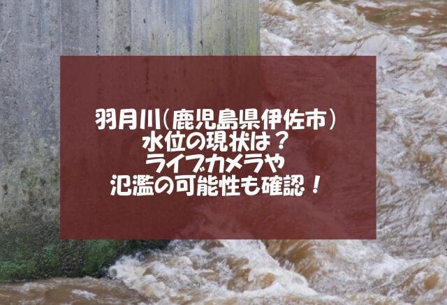 羽月川の水位