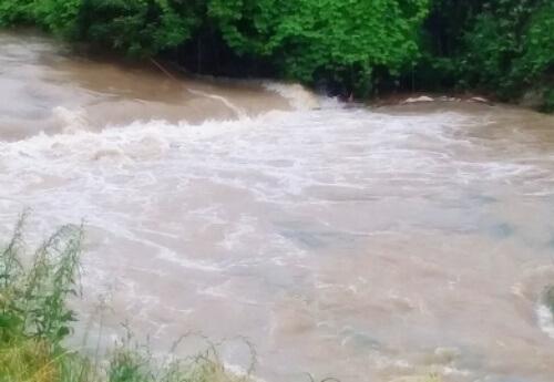 意宇川の水位2