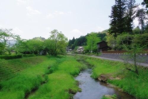 意宇川の水位3