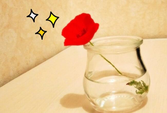 花瓶に入った赤い花1輪