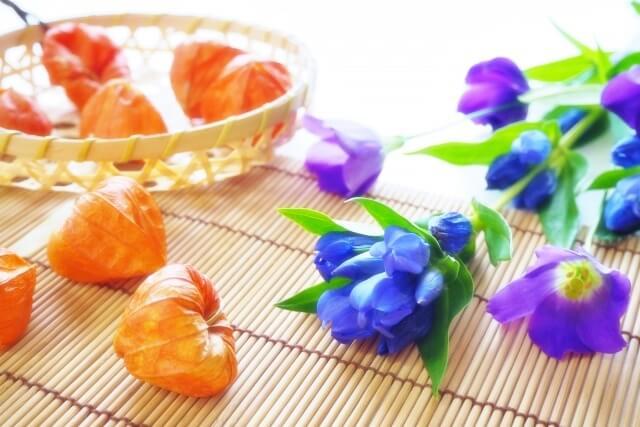 ほうずきと紫の花
